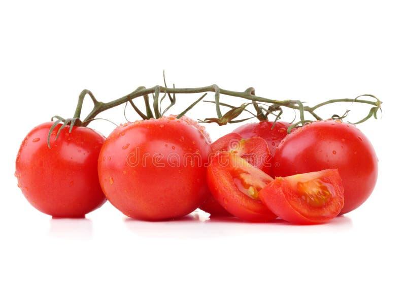 Φρέσκες ντομάτες από τον κήπο στοκ φωτογραφία με δικαίωμα ελεύθερης χρήσης