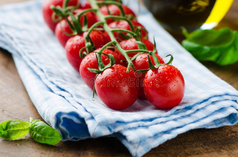 Φρέσκες ντομάτες και bazalik στοκ φωτογραφία με δικαίωμα ελεύθερης χρήσης