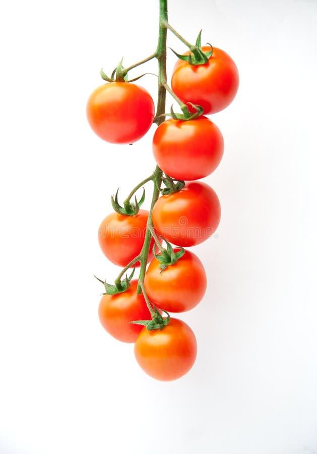φρέσκες ντομάτες κερασι στοκ εικόνες