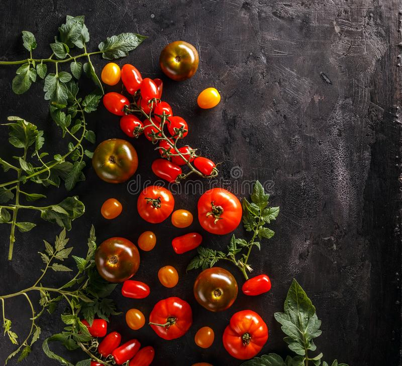 φρέσκες οργανικές ντομάτ&eps στοκ εικόνα με δικαίωμα ελεύθερης χρήσης