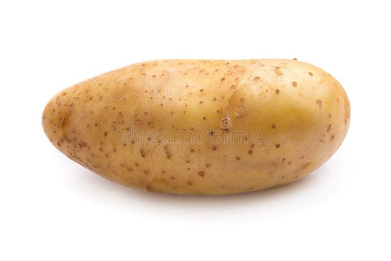 Φρέσκες πατάτες που απομονώνονται πέρα από ένα άσπρο υπόβαθρο στοκ εικόνες