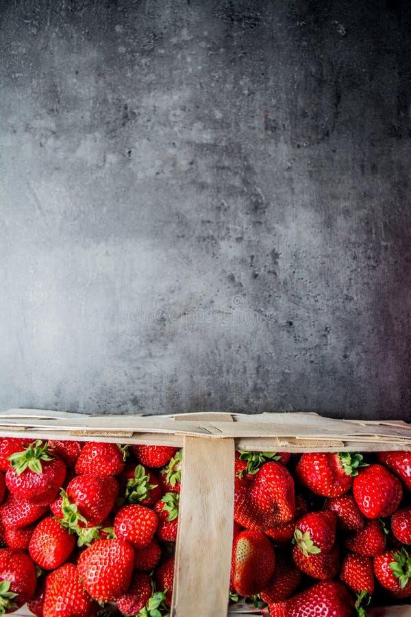 φρέσκες φράουλες μαύρες φράουλες ανασκόπ&et Θέση στο κείμενο στοκ φωτογραφίες με δικαίωμα ελεύθερης χρήσης