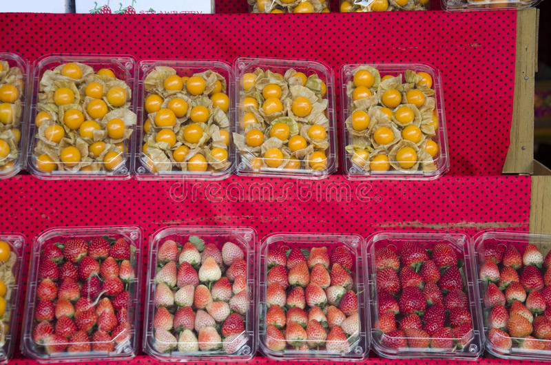 Φρέσκες φράουλες και φρέσκο φρούτα ή Physalis ριβησίων αστεριών στοκ εικόνα με δικαίωμα ελεύθερης χρήσης