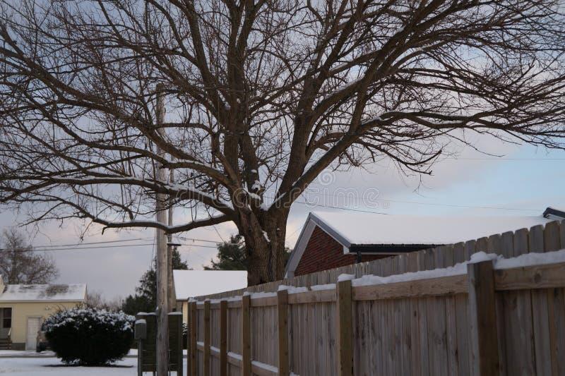 φρέσκες χιονοπτώσεις στοκ φωτογραφίες