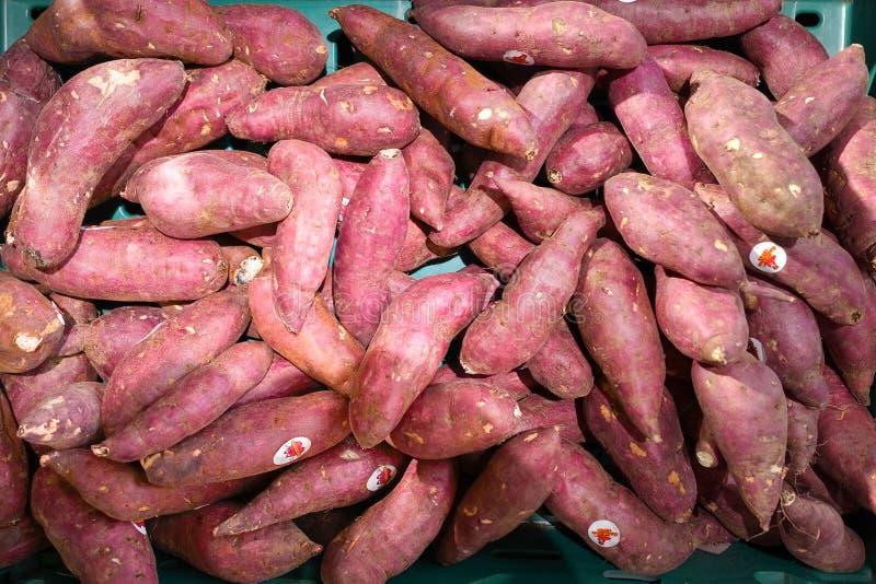 Φρέσκια γλυκιά πατάτα στοκ φωτογραφία με δικαίωμα ελεύθερης χρήσης