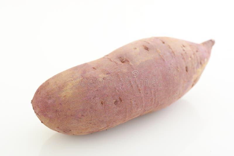 Φρέσκια γλυκιά πατάτα στοκ εικόνες