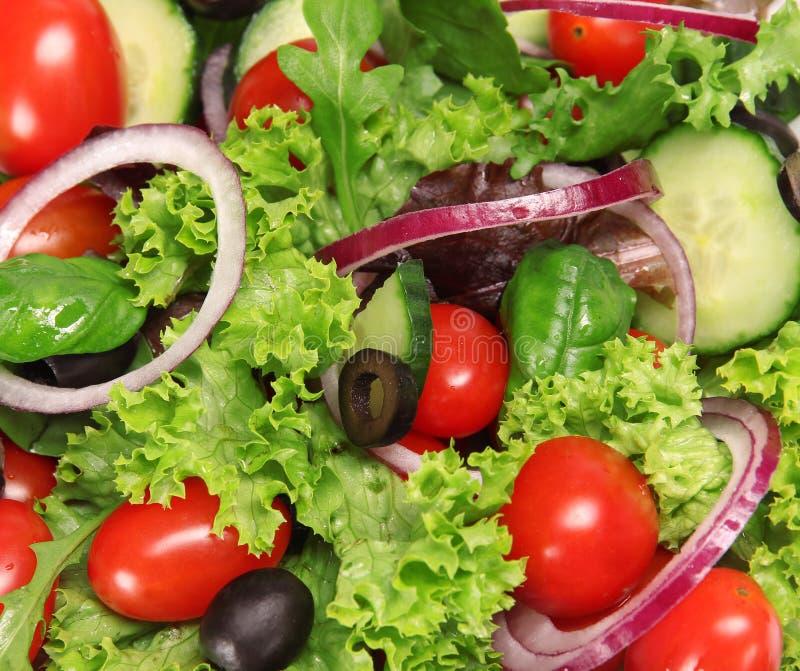 φρέσκια ελληνική σαλάτα στοκ εικόνα με δικαίωμα ελεύθερης χρήσης