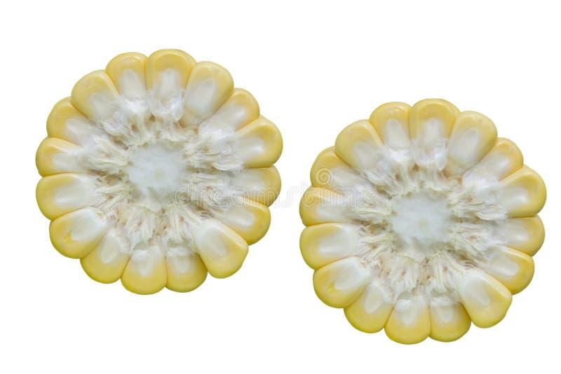 Φρέσκια διατομή καλαμποκιού στοκ εικόνα με δικαίωμα ελεύθερης χρήσης
