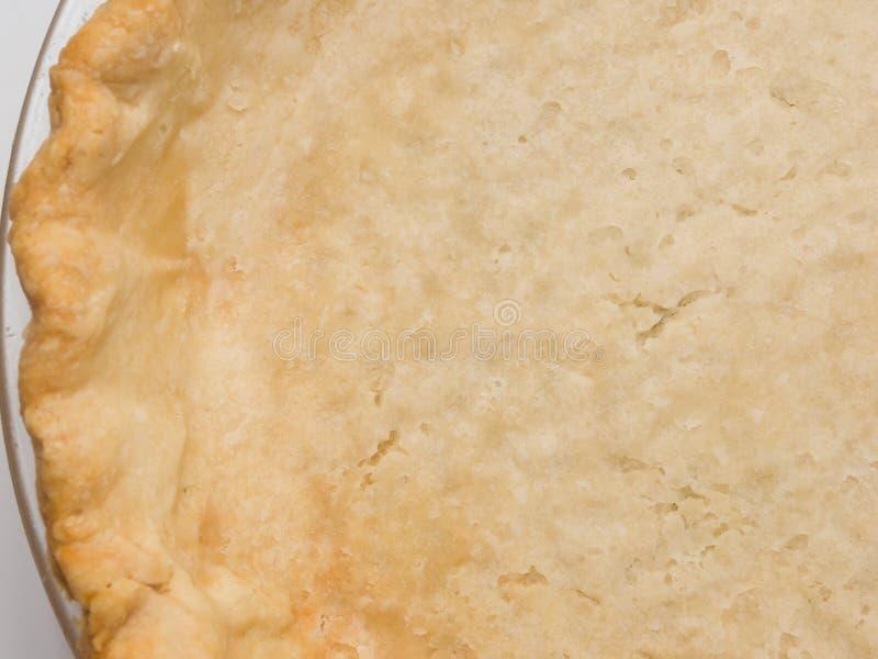 Φρέσκο κοχύλι πιτών στοκ εικόνες με δικαίωμα ελεύθερης χρήσης