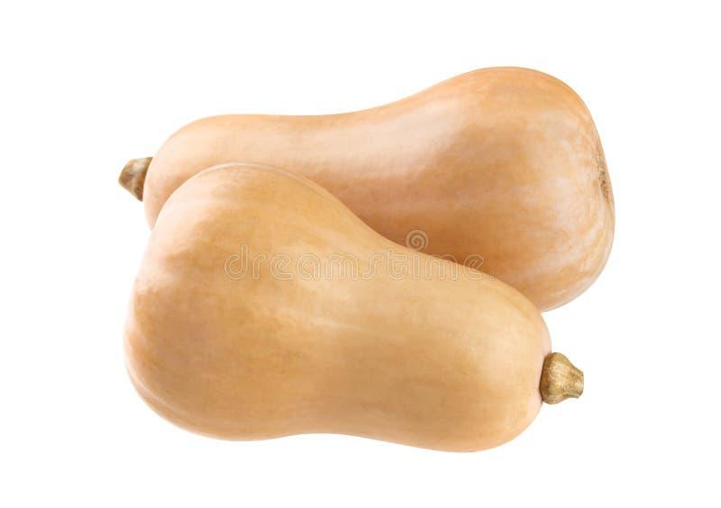 Φρέσκια κολοκύνθη butternut που απομονώνεται σε ένα άσπρο υπόβαθρο στοκ εικόνες