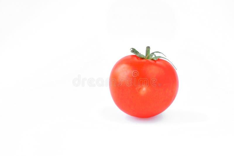 Φρέσκια κόκκινη ντομάτα με τη σπονδυλική στήλη στοκ εικόνα