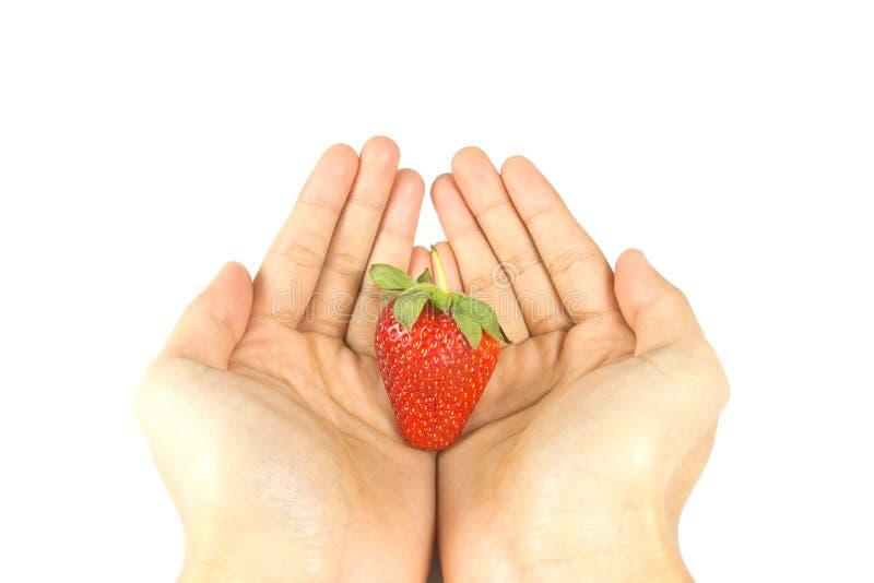 φρέσκια κόκκινη φράουλα χ&ep στοκ εικόνα με δικαίωμα ελεύθερης χρήσης