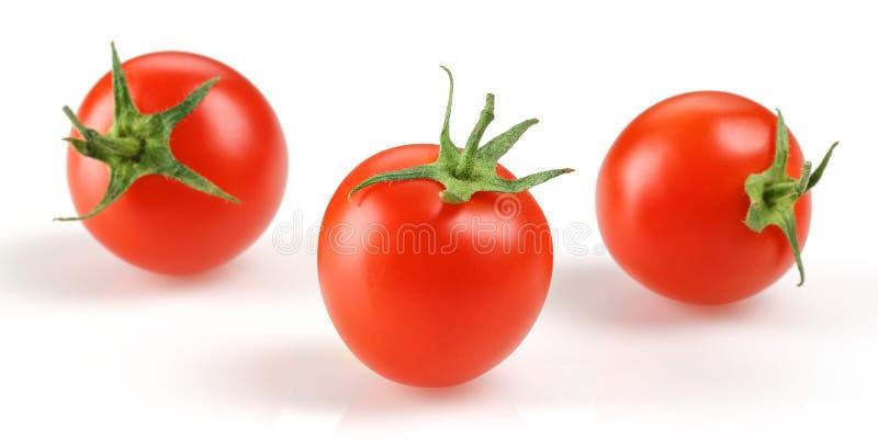 φρέσκια ντομάτα κερασιών στοκ φωτογραφία