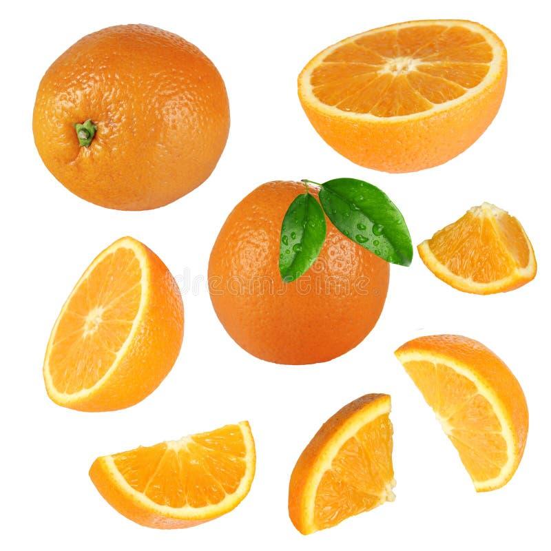 Φρέσκια πορτοκαλιά συλλογή στοκ φωτογραφία