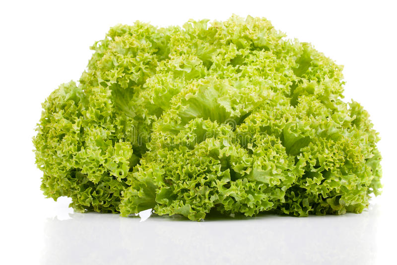 Φρέσκια πράσινη σαλάτα μαρουλιού στοκ φωτογραφία με δικαίωμα ελεύθερης χρήσης