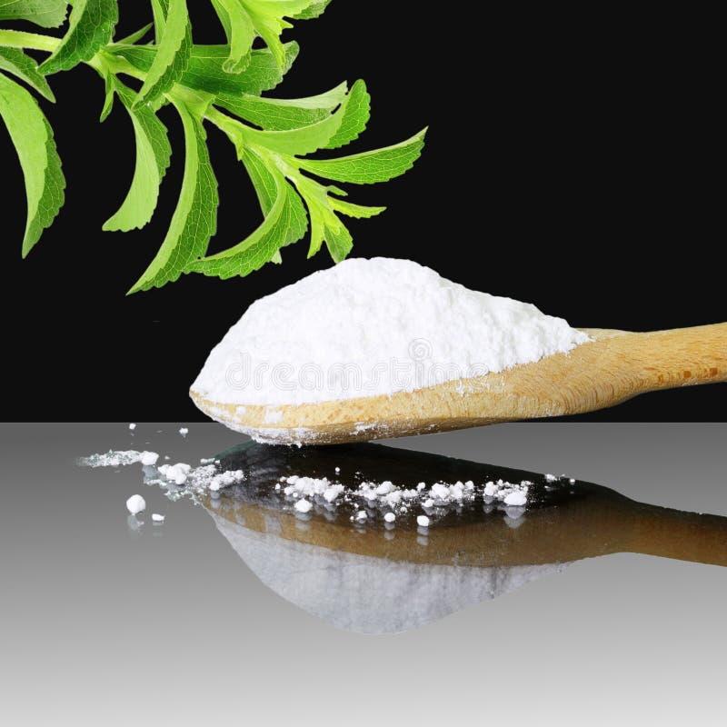 Φρέσκια πράσινη σκόνη Stevia και αποσπασμάτων στο μαύρο υπόβαθρο στοκ εικόνες