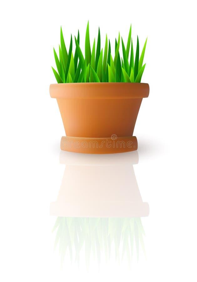 Φρέσκια πράσινη χλόη flowerpot απεικόνιση αποθεμάτων