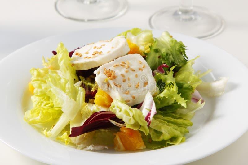Φρέσκια σαλάτα με το τυρί αιγών στοκ εικόνες με δικαίωμα ελεύθερης χρήσης
