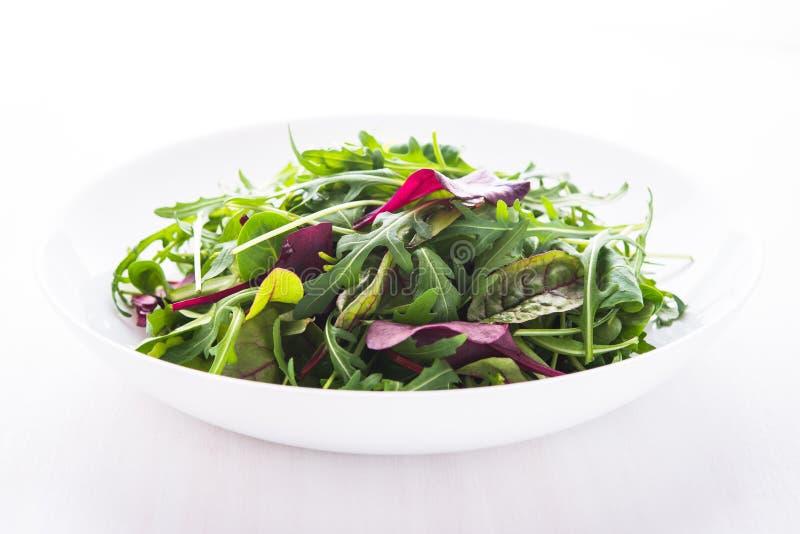 Φρέσκια σαλάτα με τα μικτά πράσινα & x28 arugula, mesclun, mache& x29  άσπρο ξύλινο στενό σε επάνω υποβάθρου στοκ φωτογραφία με δικαίωμα ελεύθερης χρήσης