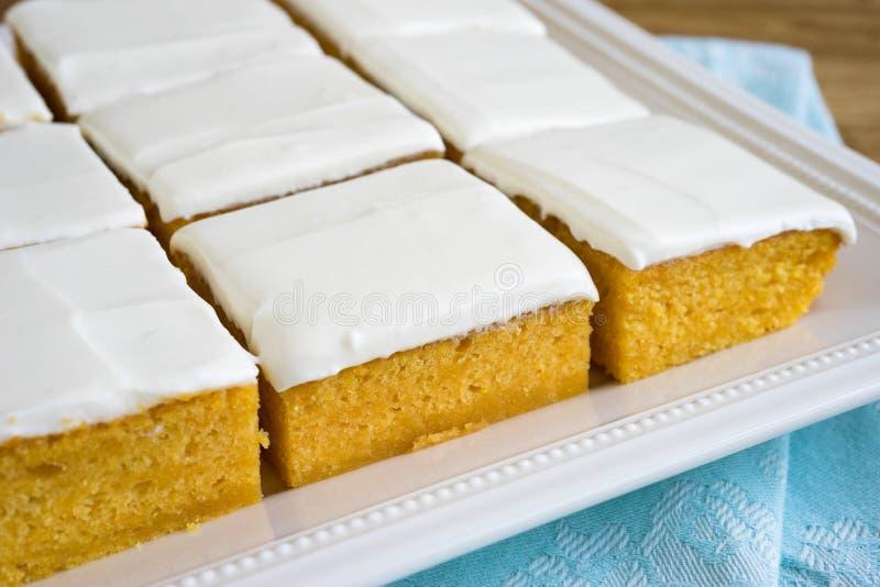 Φρέσκια σπιτική πίτα κολοκύθας στοκ φωτογραφίες με δικαίωμα ελεύθερης χρήσης