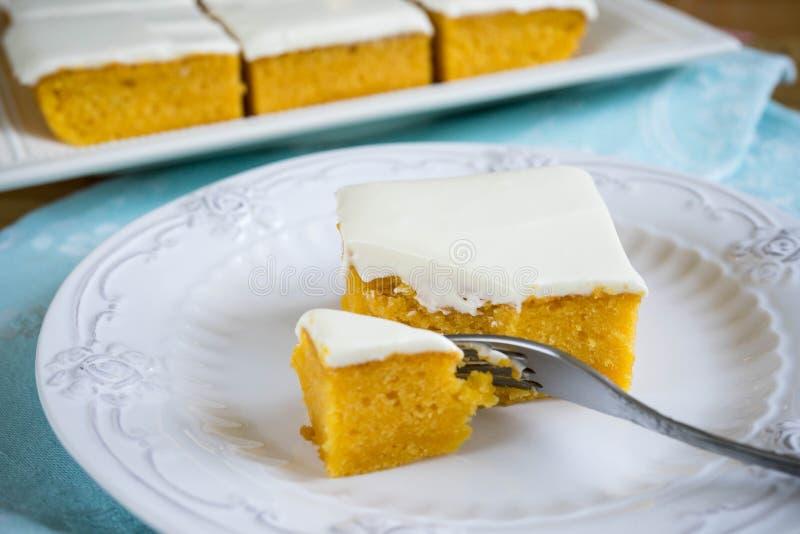 Φρέσκια σπιτική πίτα κολοκύθας στοκ εικόνες με δικαίωμα ελεύθερης χρήσης