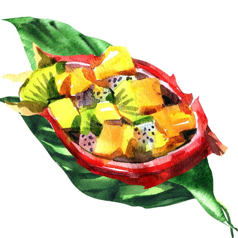 Φρέσκια τροπική σαλάτα φρούτων στα φρούτα δράκων στα φύλλα παλαμών, υγιές πρόγευμα, έννοια τροφίμων, συρμένο χέρι watercolor στοκ φωτογραφία
