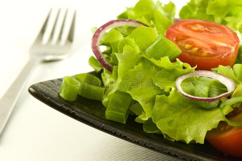 φρέσκια υγιής σαλάτα πιάτω στοκ εικόνα με δικαίωμα ελεύθερης χρήσης