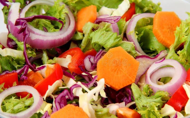 φρέσκια υγιής σαλάτα στοκ εικόνες