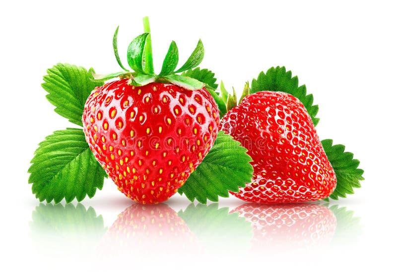 Φρέσκια φράουλα μούρων με τα πράσινα φύλλα fruity ελεύθερη απεικόνιση δικαιώματος