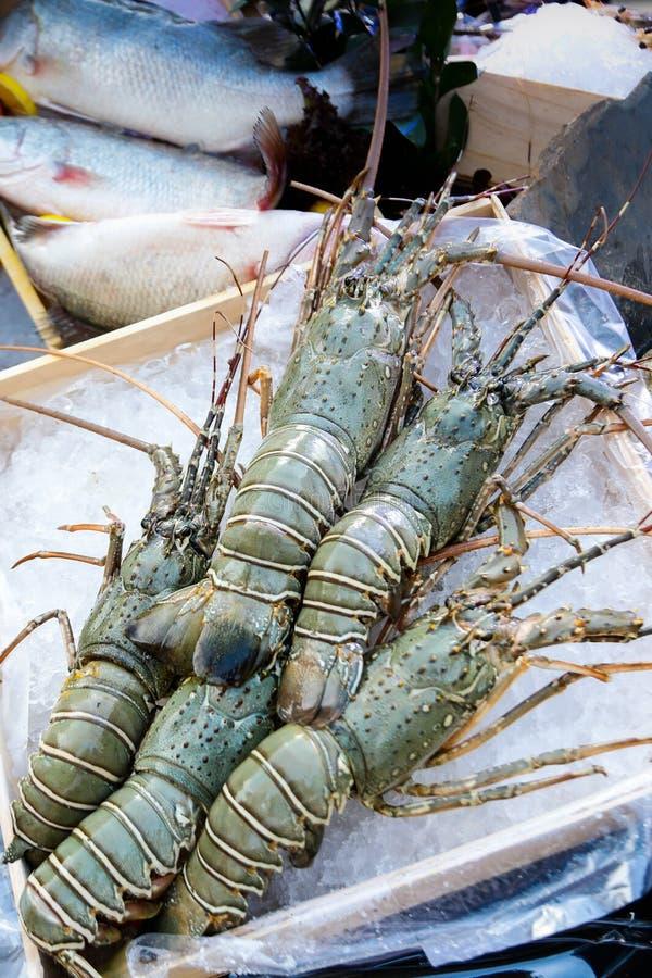 Φρέσκοι αστακοί στον πάγο, τρόφιμα οδών, αγορά θαλασσινών, αστακοί clo στοκ εικόνες