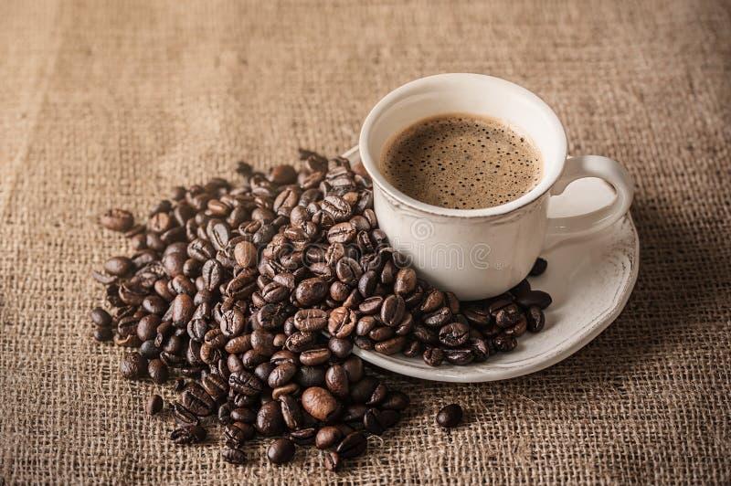 Φρέσκοι καφές και φασόλια καφέ sackcloth στοκ εικόνες