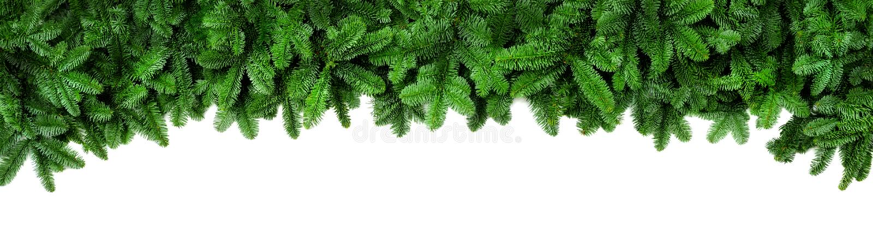 Φρέσκοι πράσινοι κλάδοι έλατου, ευρέα σύνορα Χριστουγέννων στοκ φωτογραφία με δικαίωμα ελεύθερης χρήσης