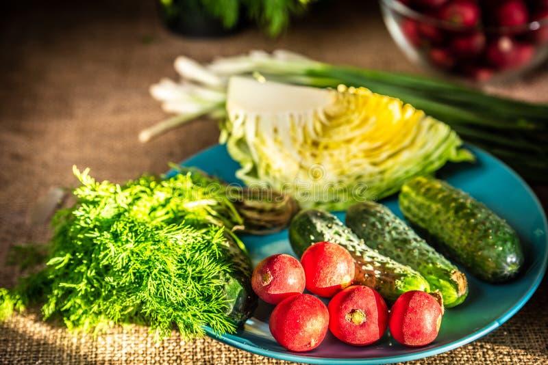 Φρέσκοι ραδίκια, λάχανο, αγγούρι και άνηθος σε ένα μπλε πιάτο στοκ φωτογραφία
