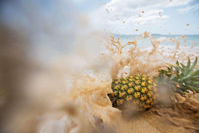 Φρέσκος ανανάς που χτυπιέται από ένα κύμα στην παραλία στοκ φωτογραφίες