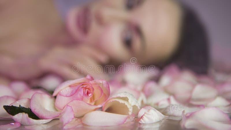 Φρέσκος αυξήθηκε πέταλα και ρόδινο μπουμπούκι τριαντάφυλλου Θολωμένο πρόσωπο γυναικών με το clea στοκ εικόνες