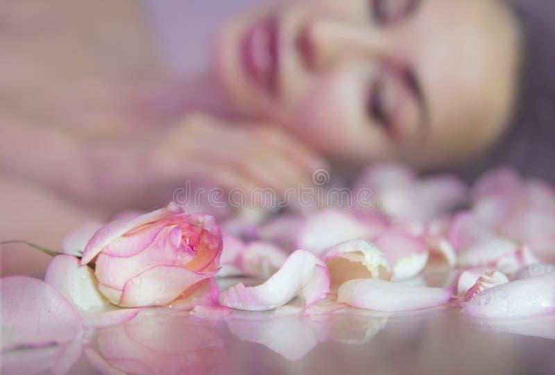 Φρέσκος αυξήθηκε πέταλα και ρόδινο μπουμπούκι τριαντάφυλλου Θολωμένο πρόσωπο γυναικών με το clea στοκ φωτογραφίες με δικαίωμα ελεύθερης χρήσης