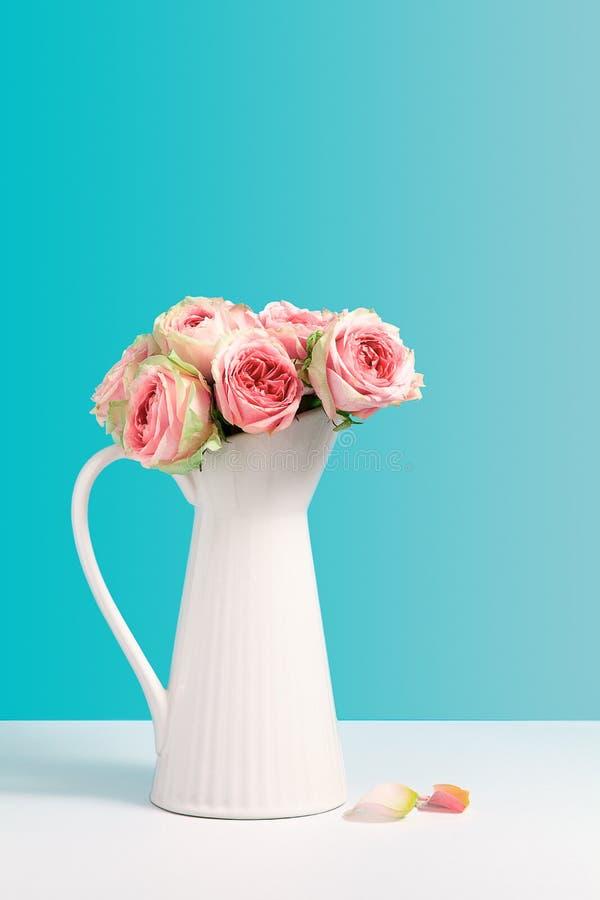 Φρέσκος αυξήθηκε στην άσπρη κεραμική στάση βάζων στο μπλε υπόβαθρο Σύνθεση μινιμαλισμού με τα λουλούδια, βάζο με το διάστημα αντι στοκ φωτογραφία με δικαίωμα ελεύθερης χρήσης