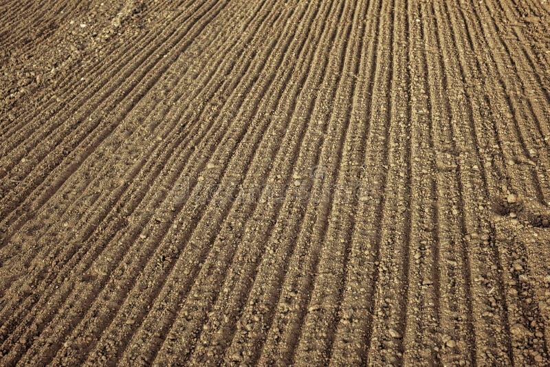 Φρέσκος γεωργικός οργωμένος τομέας στοκ φωτογραφίες με δικαίωμα ελεύθερης χρήσης