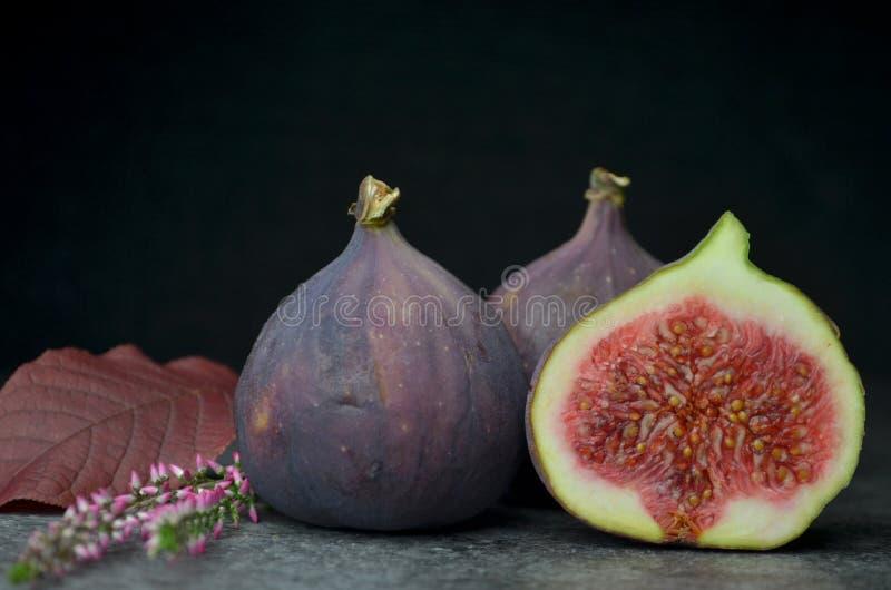 Φρέσκος οργανικός κατάλληλος βιο φρούτων σύκων στοκ εικόνα με δικαίωμα ελεύθερης χρήσης