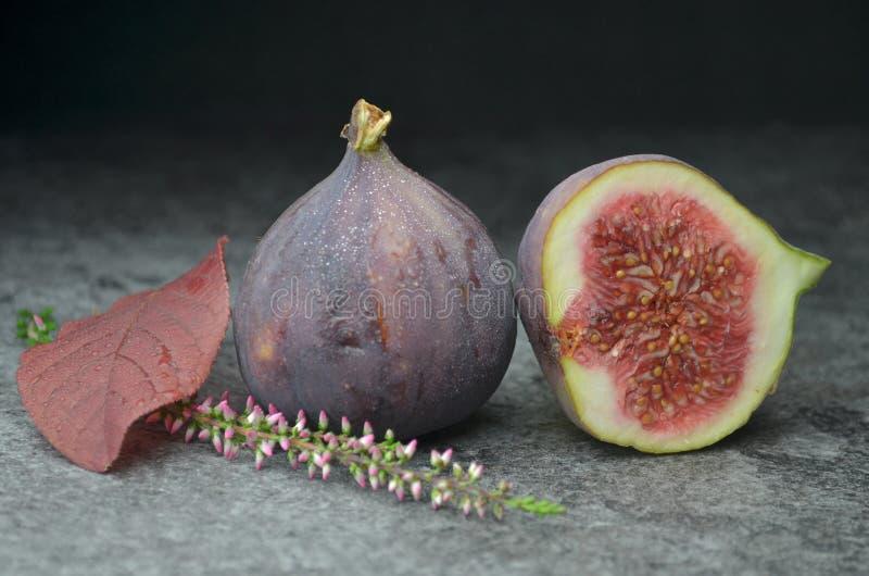 Φρέσκος οργανικός κατάλληλος βιο φρούτων σύκων στοκ φωτογραφία με δικαίωμα ελεύθερης χρήσης