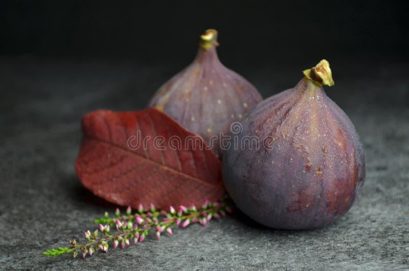 Φρέσκος οργανικός κατάλληλος βιο φρούτων σύκων στοκ εικόνες