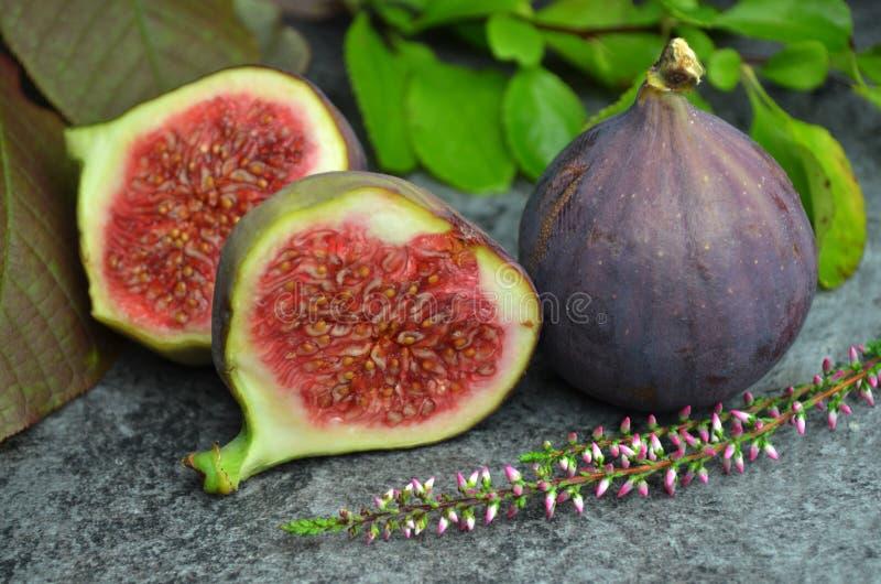 Φρέσκος οργανικός κατάλληλος βιο φρούτων σύκων στοκ εικόνες με δικαίωμα ελεύθερης χρήσης