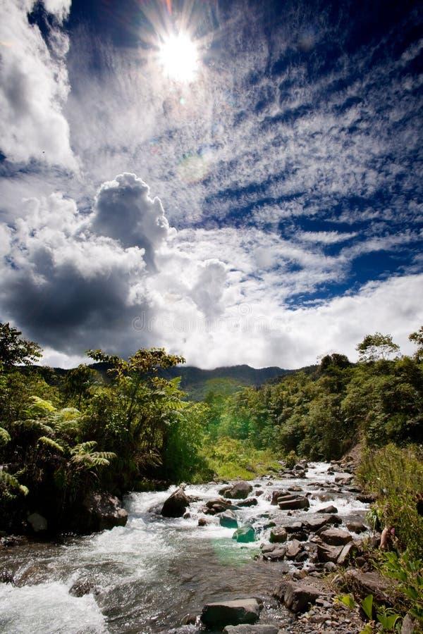 φρέσκος ποταμός βουνών στοκ φωτογραφίες με δικαίωμα ελεύθερης χρήσης