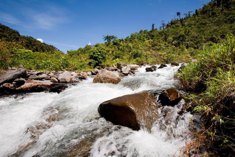 φρέσκος ποταμός βουνών στοκ εικόνες