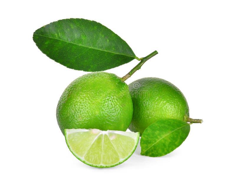 Φρέσκος πράσινος ασβέστης τα πράσινα φύλλα που απομονώνονται με στο λευκό στοκ φωτογραφίες με δικαίωμα ελεύθερης χρήσης