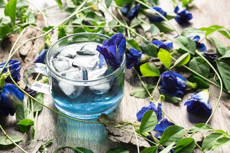 Φρέσκος χυμός λουλουδιών μπιζελιών πεταλούδων με τον πάγο στο γυαλί στο ξύλινο υπόβαθρο στοκ φωτογραφίες