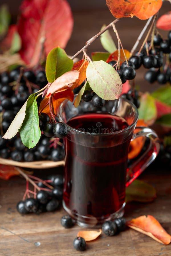 Φρέσκος χυμός ώριμου μαύρου chokeberry στο γυαλί και των μούρων με τα φύλλα στοκ φωτογραφία