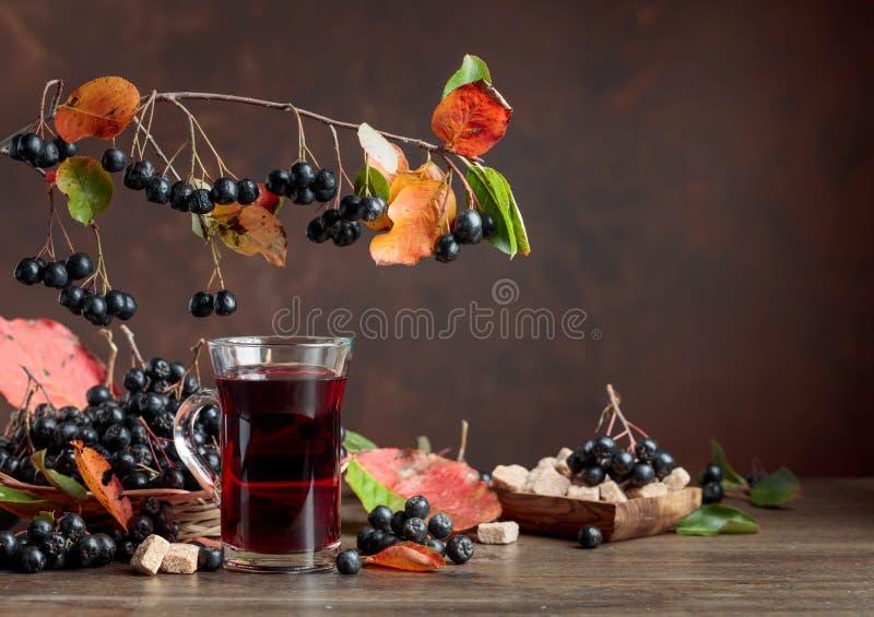 Φρέσκος χυμός ώριμου μαύρου chokeberry στο γυαλί και των μούρων με το λ στοκ εικόνες με δικαίωμα ελεύθερης χρήσης