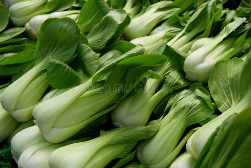 Φρέσκο λάχανο choi Pak στην αγορά πόλεων στοκ εικόνες