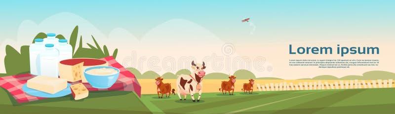 Φρέσκο έμβλημα καλλιέργειας Eco γαλακτοκομικών προϊόντων γάλακτος αγελάδων διανυσματική απεικόνιση